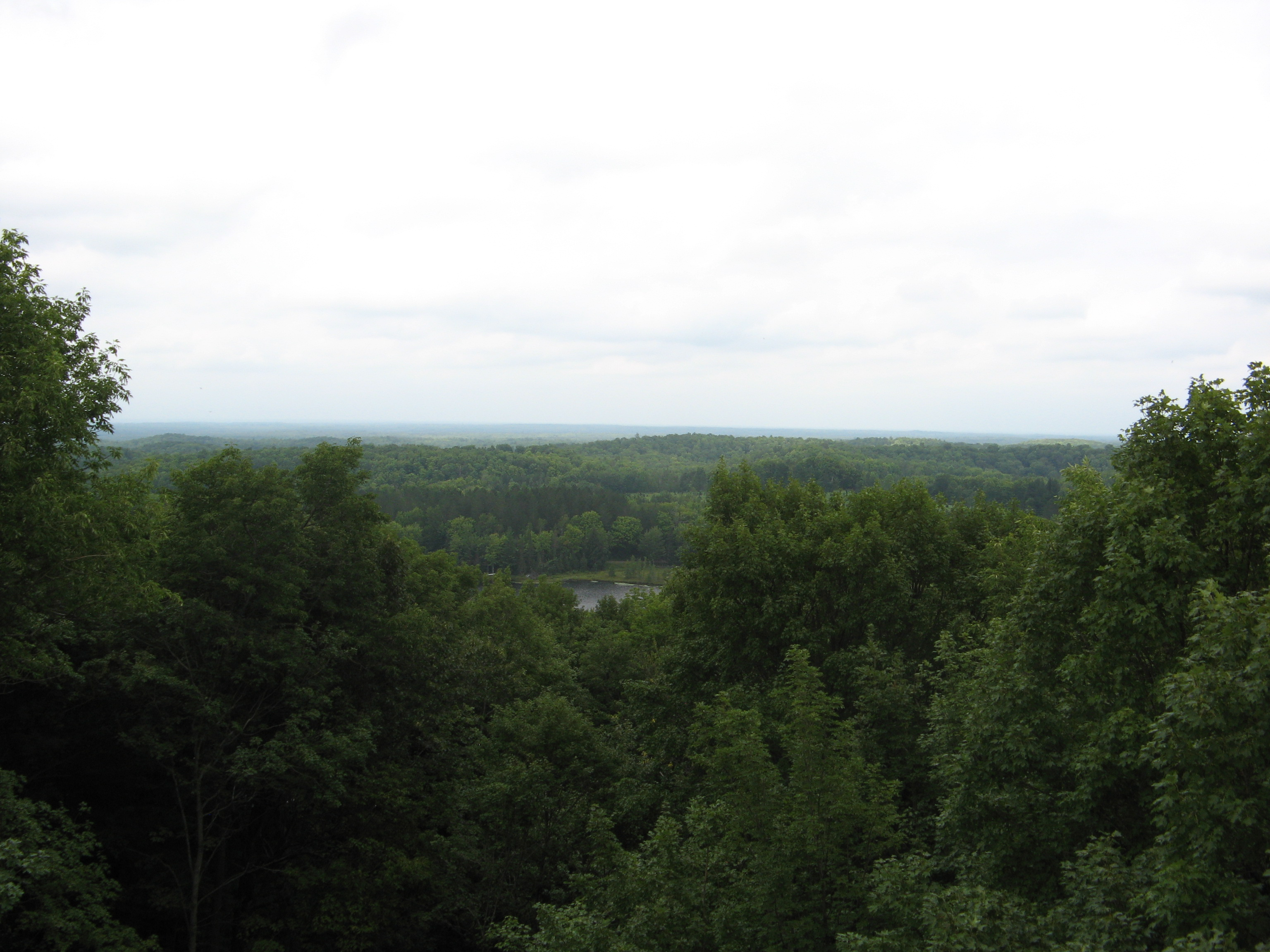 View from the observation tower